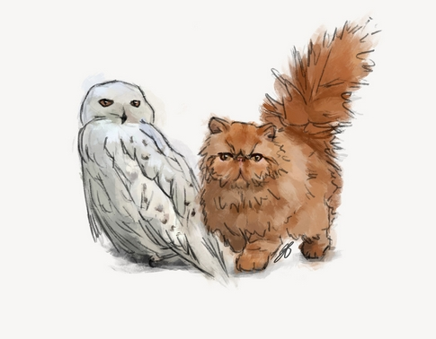 Colored drawing of Harry Potter characters Hedwig and Crookshanks.