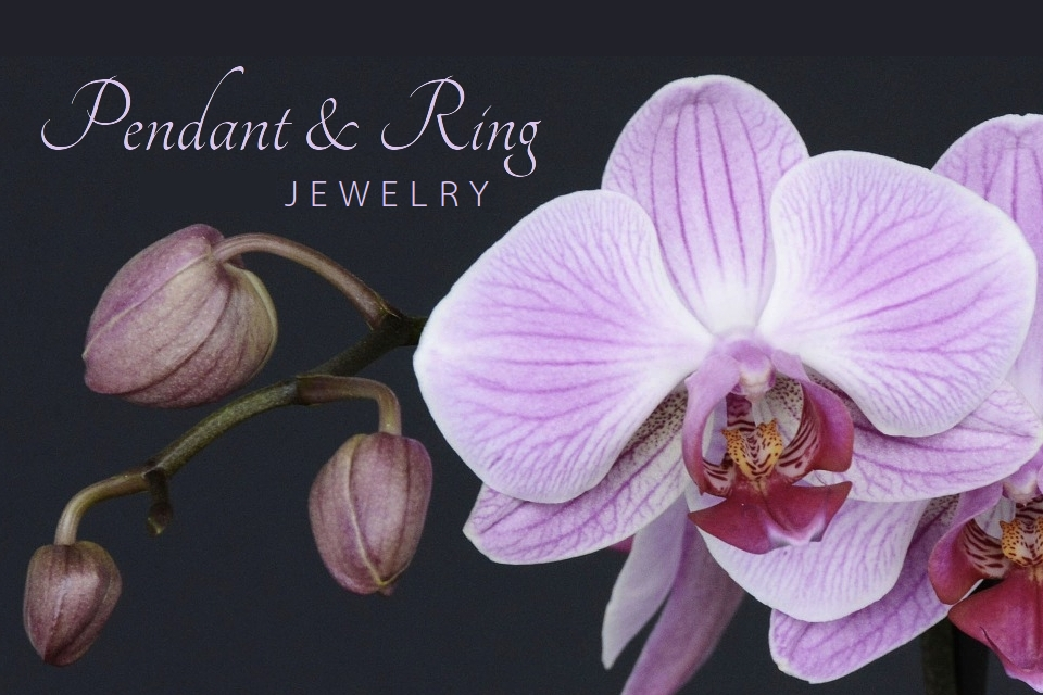 Jewelry Pendant and Ring