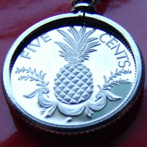 Bahamas Pineapple Coin Pendant https://www.ebay.com/itm/332481797590