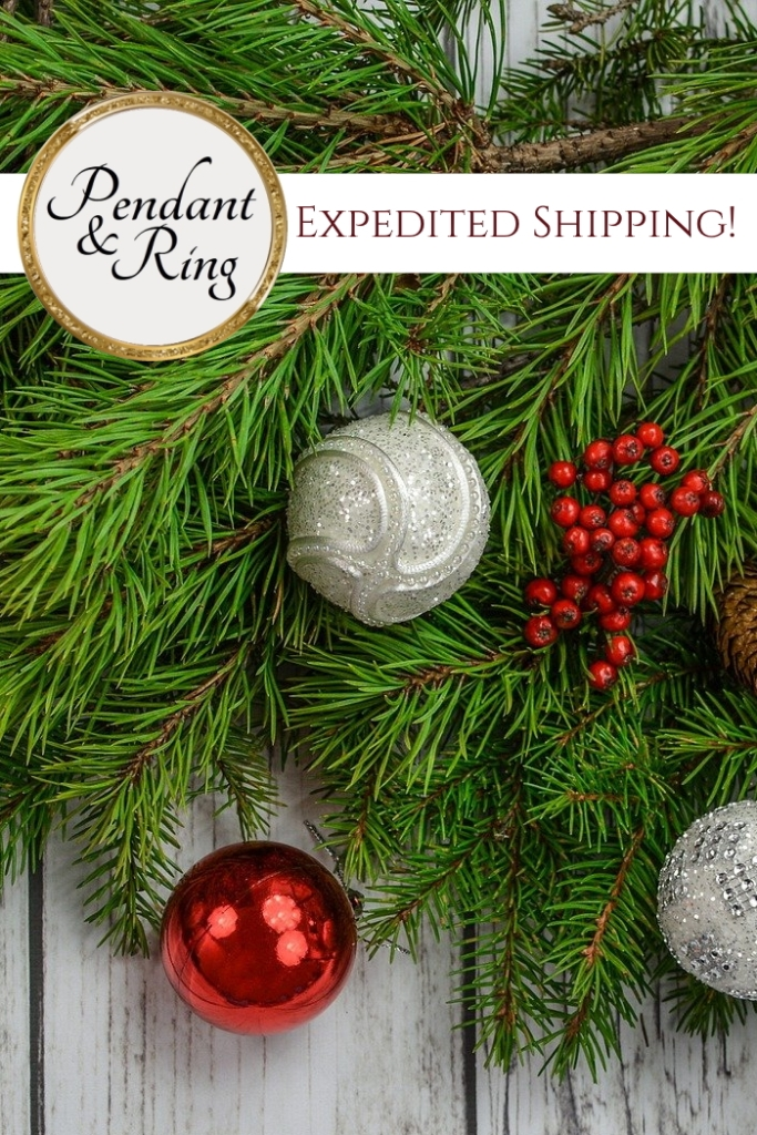 Getting those last minute holiday gifts? Contact us for Expedited Shipping!