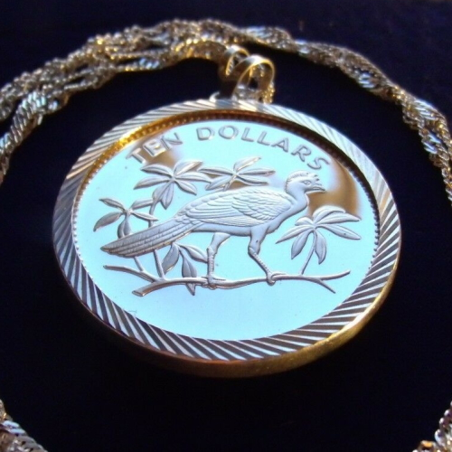 Silver Great Curassow Belize Bird Coin Pendant Necklace